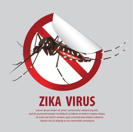 Sexual Transmission of the Zika Virus